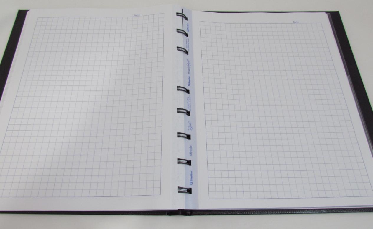 : Coordinate Plane Graph Paper 20 X 20 , Coordinate Plane Worksheets ...