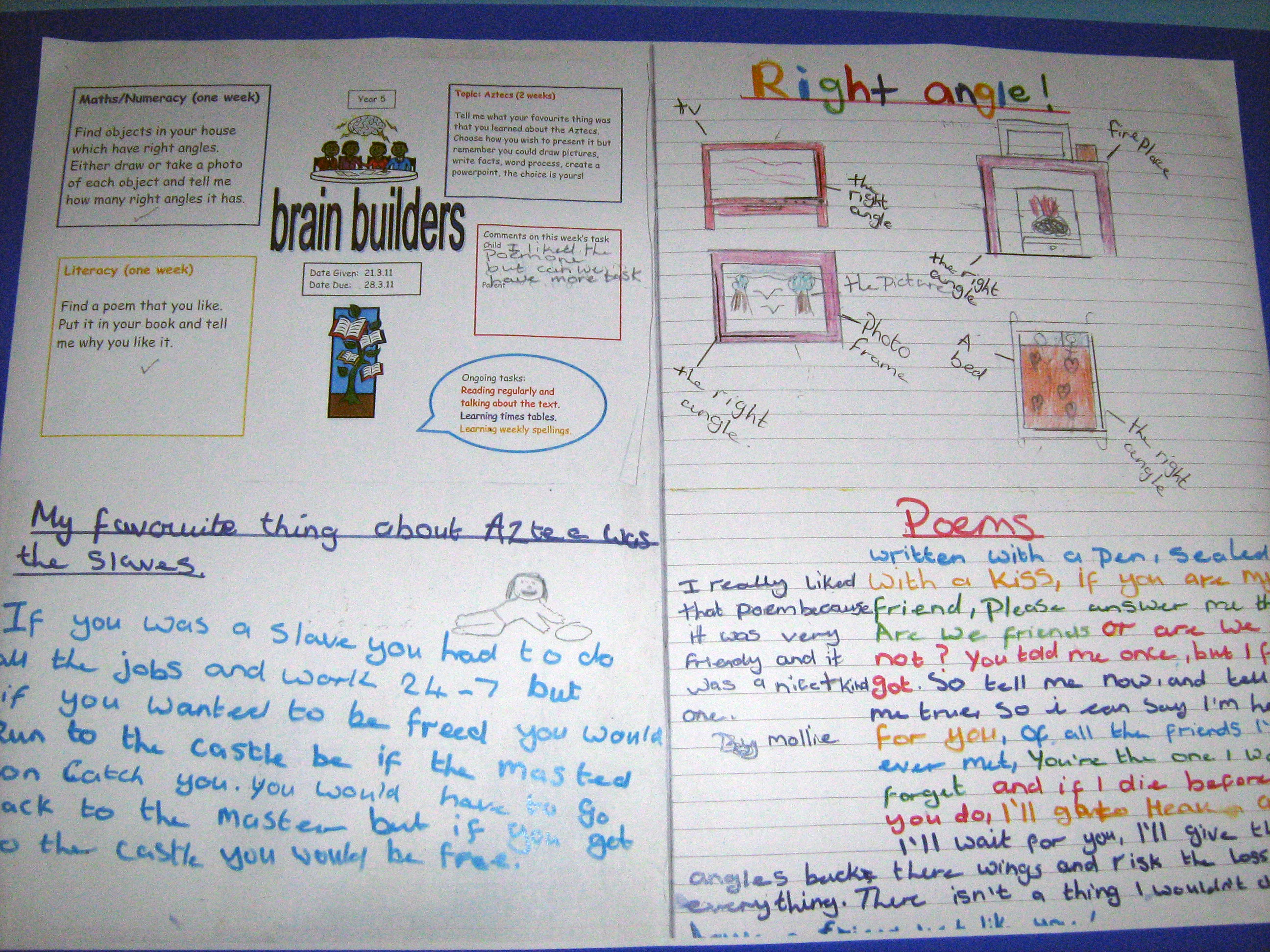 learning logs essay Essay kolb s learning cycle  they need quiet thinking time to help them d o better and complete their learning logs or diaries  learning coach essay.